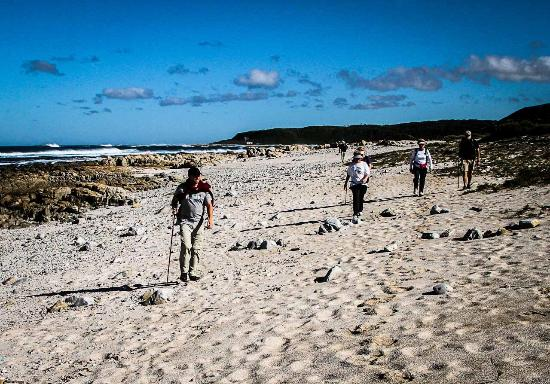 Cape St Francis, South Africa: Walk on the beach