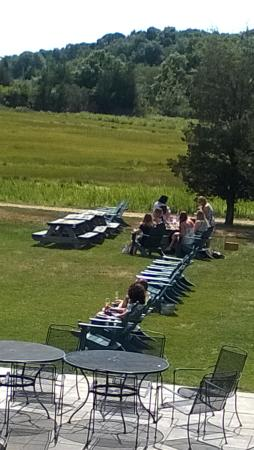 Saltwater Farm Vineyard : relaxing in the sun outdoors