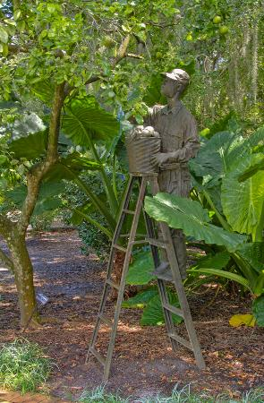 Orange pickier statue foto de harry p leu gardens for Jardines de harry p leu