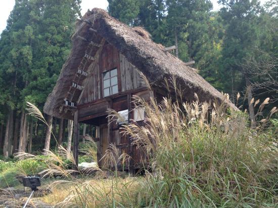 I bachi da seta - Picture of Shirakawago Gassho Zukuri Minkaen, Shirakawa-mur...