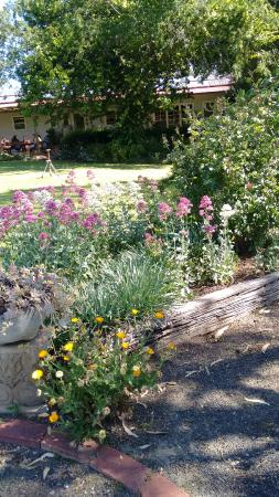 Mudgee's Getaway Cottages: Garden Cottage