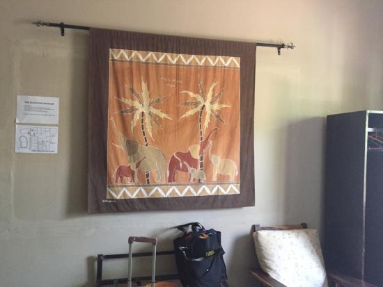 Chameleon Backpackers Hostel Photo