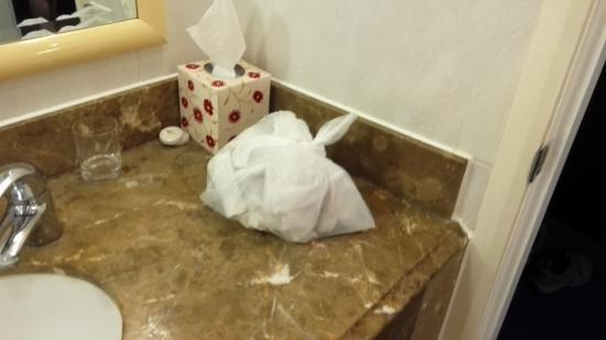 Britannia Edinburgh Hotel: Used toilet paper bag on the wash stand