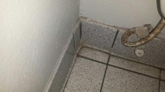 Sandcastle Inn Black Mold In Tub And On Floor