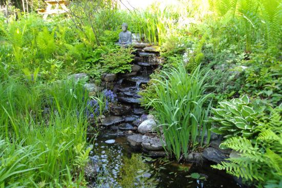 Gite Forestier de la Riviere Saguay: Jardin D,eau