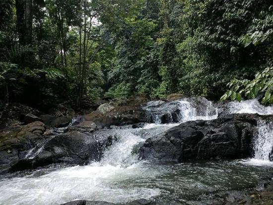 Curug Gendang Waterfall