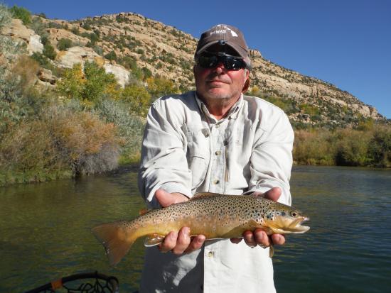 Navajo Dam, NM: Brown trout