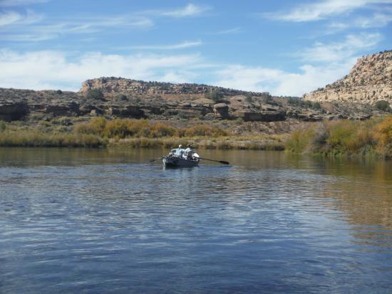 Navajo Dam, NM: View