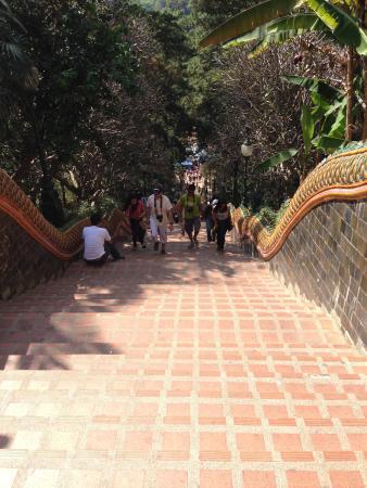 พระธาตุดอยคำ - Picture of Wat Phra That Doi Kham (Temple of the Golden Mounta...