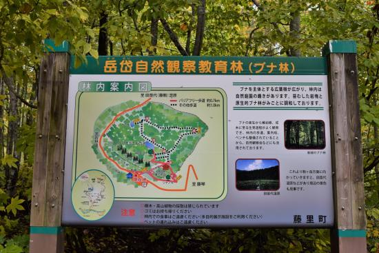 Dakedai Nature Observation Woods 이미지