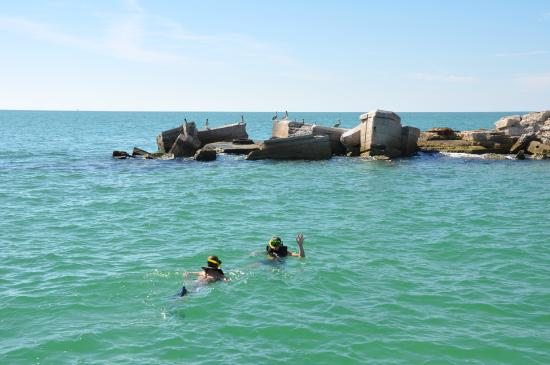 The ruins at egmont key is where we offer a snorkeling for Hubbards marina fishing