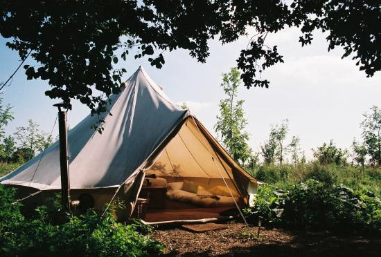 The Farm Camp : Yertis tent exterior