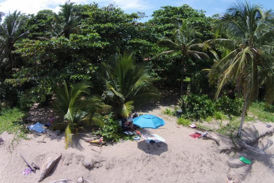 La Caracola: beach