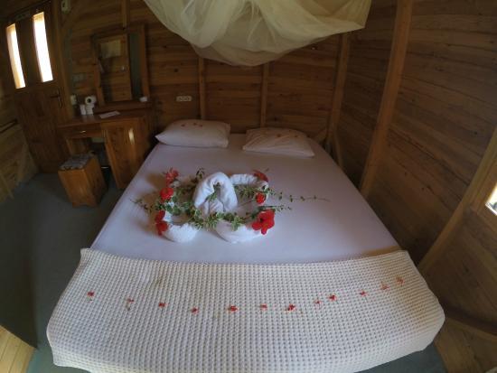 Fullmoon Camp: bungalow