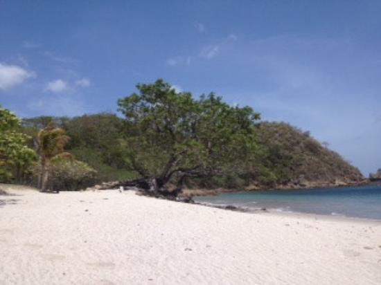 Ecoplaya Beach Resort: Playa Rajadita