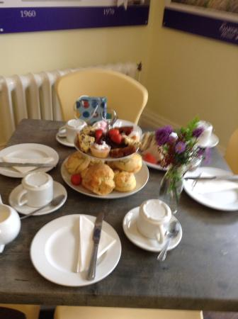 The Garden House: Cream tea