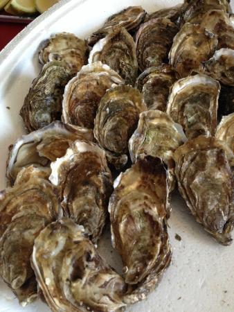 Derchigny, Francia: les huitres.. et pourquoi pas un  plateaud de frutis de mer