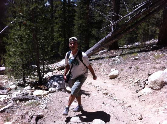 Tahoe Meadows Whole Access Interpretive Trail: Trilha