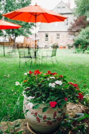 Woodstock Inn Bed and Breakfast : Yard