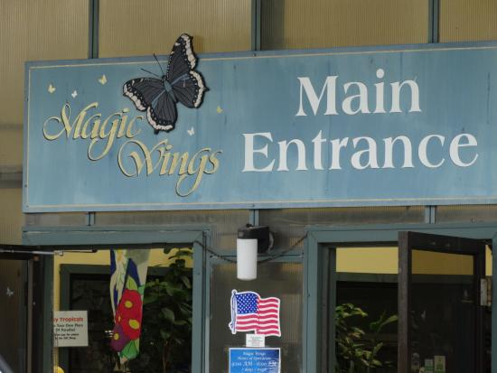 South Deerfield (MA) United States  City pictures : Magic Wings Butterfly Conservatory and Gardens: Magic Wings Butterfly ...