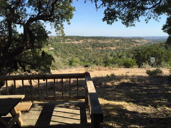 Walnut Canyon Guest Cabins: View from back of main house.