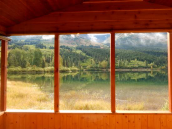 Summit Lake Lodge: View from our cabin front window