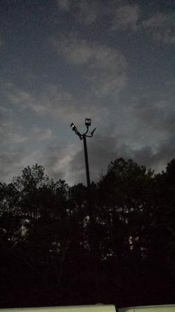 Quality Inn & Suites Birmingham Highway 280: non-working lights in parking lot
