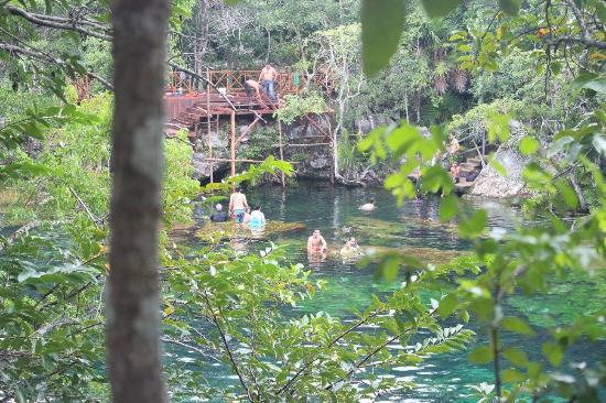 Foto de cenote ponderosa yucatan tripadvisor for Jardin del eden