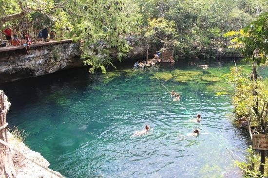 plataforma de salto picture of cenote jardin del eden