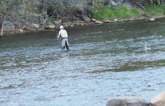 Fly fishing on the animas river picture of animas river for Durango co fly fishing