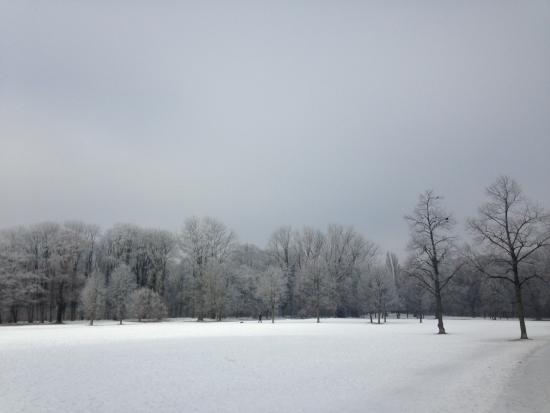 El jard n ingl s en invierno englischen garten munich for Jardin ingles