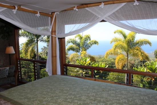 Aloha Guest House: Kohola room