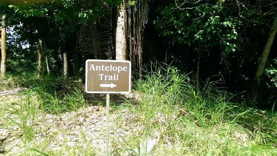 Stann Creek, Belize : Trailhead