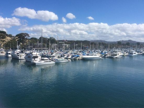 Dana Point, CA: photo6.jpg
