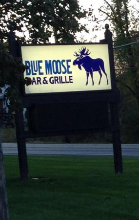 ‪The Blue Moose Bar & Grille‬