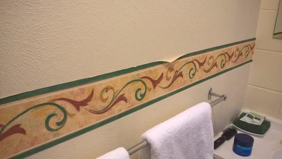 Colonial Court Motel: Bathroom wear and tear