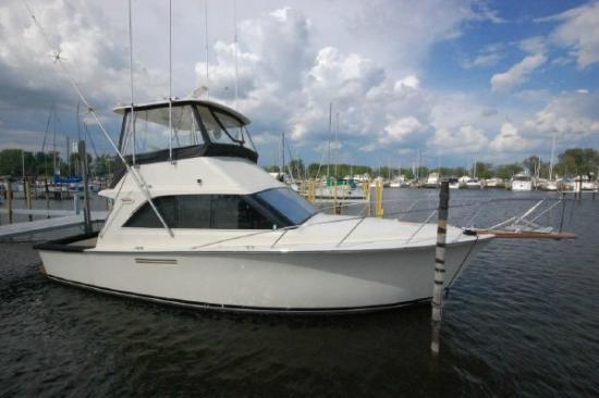 Duluthsportfishing.com