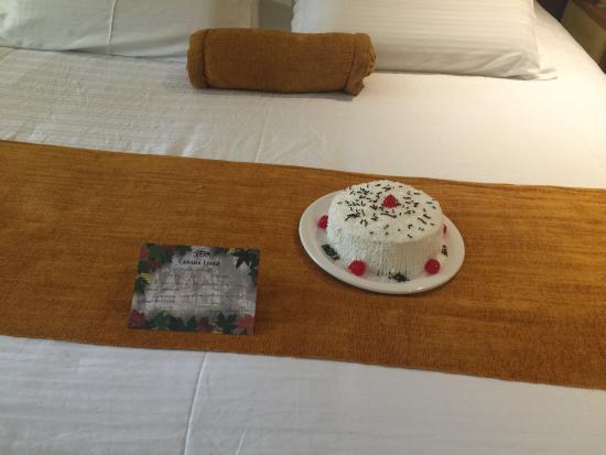 Canada Lodge: Surpresa linda ao entrar no quarto pelo aniversario.