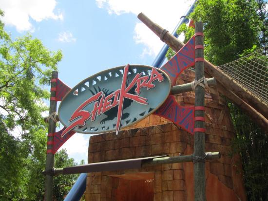 6 Picture Of Busch Gardens Tampa Tampa Tripadvisor