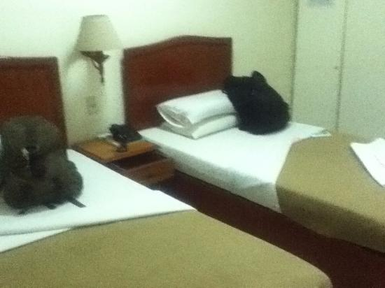 CebuView Tourist Inn : twin room2