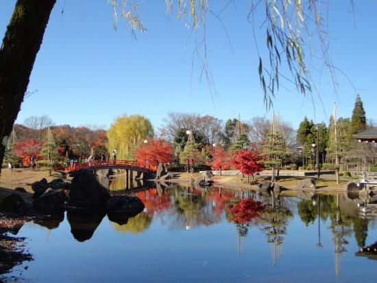 Murasakishikibu Park: Fiz fotos incríveis aqui