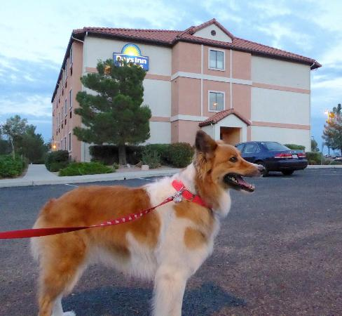 Days Inn & Suites Camp Verde Arizona: The grounds were well maintained and spotless!