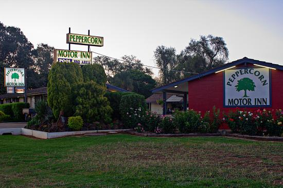 Narromine, Australien: Motel entrance