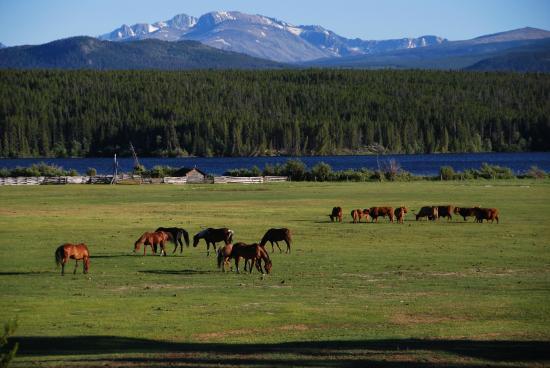 Terra Nostra Guest Ranch: Blick vom Haupthaus Richtung Clearwaterlake