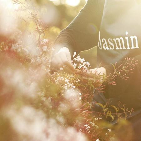 Mount Tamborine, Αυστραλία: Jasmine picking