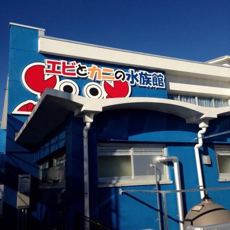 Susami Crustacean Aquarium