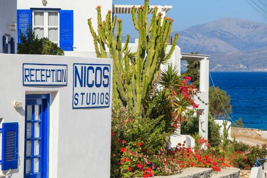 Logaras, Hellas: Nicos studios