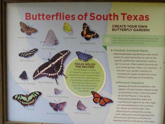 Falcon State Park: Butterfly Garden Guide, Falcon
