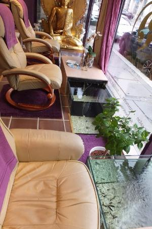 Fish pedicure picture of a list salon spa budapest for Fish pedicure price
