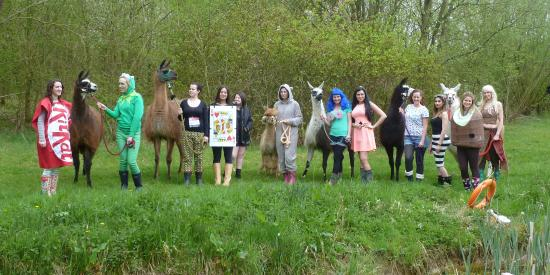 Catanger Llamas: hen party